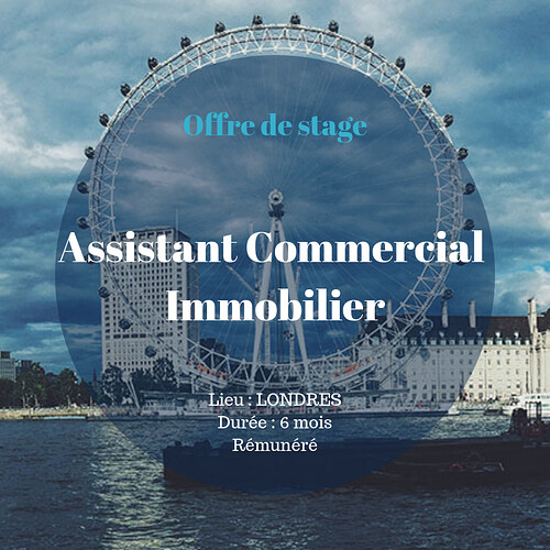 Stage%20Assistant%20Commercial%20Immobilier%20LONDRES%20-%20Copy